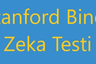 Stanford Binet Zeka Testi